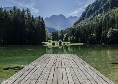 Short pier over a body of water surrounded by trees