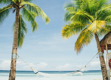 Hammock between two palm trees on a beach